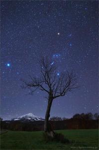 霊峰、鳥海山に狩人現る - 遥かなる月光の旅