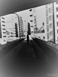 久々のミステイク - NA*GO*美PHOTO