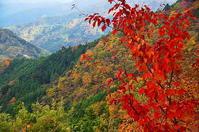 奥多摩の秋の峰々 - 風の香に誘われて 風景のふぉと缶