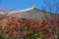 奈良市奈良公園スナップ:01 - ぶらり記録:2 奈良・大阪・・・