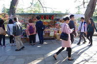 奈良市奈良公園スナップ:04 - ぶらり記録:2 奈良・大阪・・・