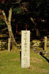 奈良市奈良公園スナップ:06 - ぶらり記録:2 奈良・大阪・・・