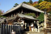 奈良市奈良公園スナップ:07 - ぶらり記録:2 奈良・大阪・・・
