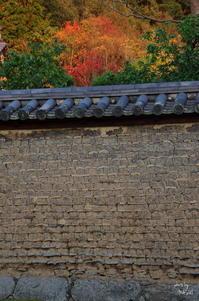 奈良市奈良公園スナップ:10 - ぶらり記録:2 奈良・大阪・・・