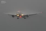 始まりは雨だった秋の成田空港#1 - 飛行機写真 ~旅客機に魅せられて~