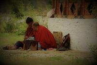 インド~ブータンの今㉝・水魚の交わり - 夢・ファンダンゴ