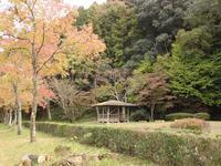 『岐阜県百年公園の秋風景・・・・・』 - 自然風の自然風だより