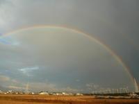 虹! - 平野部屋