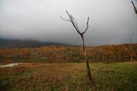 糸魚川市蓮華白池の紅葉前半 - 日本あちこち撮り歩記