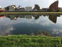 久々の名取川 - おさんぽ日記