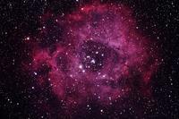 バラ星雲 - 天体写真投稿