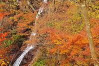 秋の三頭大滝 - 風の香に誘われて 風景のふぉと缶