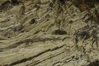 三浦半島盗人狩りの台地と空7 - はーとらんど写真感