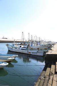 漁港 - HAPPY to ...