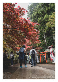 大山詣り - ♉ mototaurus photography