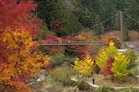 紅葉狩り - 名古屋のお菓子教室 ma favorite