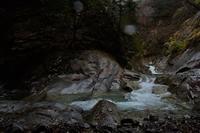 西沢渓谷の落葉④2018 - 光画日記