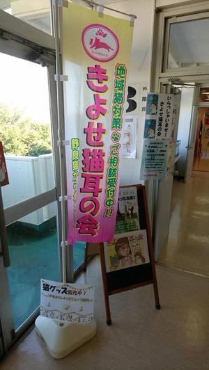 清瀬のネコ写真展2@きよせふれあいまつり終了!(2018.11月) - きよせ猫耳の会(旧 飼い主のいない猫を考える会)