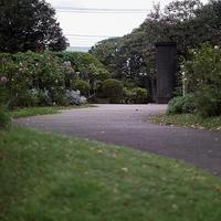 秋の横浜散歩丘公園でバラ見に来たら、イギリス館に寄らなければ18.10.13 15:21 - スナップ寅さんの「日々是口実」