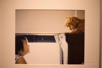 幡野広志作品展「優しい写真」 - BobのCamera