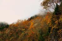 オクシズ散策 - 長い木の橋