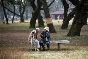 11.11(検索) - anemone