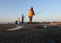 釣り日和 - 風の吹くまま何でもシャッター