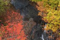 渓谷の錦 - 風の彩り-2