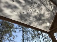 木陰のなか - Bd-home style