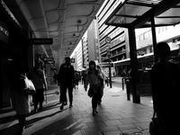 Avenue - カメラノチカラ