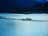 奥多摩湖湖面に浮かぶ船 - 風の香に誘われて 風景のふぉと缶