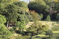 2018.11 六義園都心の静かな庭園 - ゆらりっぷ -yurari's trip-