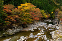 紅葉が彩る行者還林道 - 花景色-K.W.C. PhotoBlog