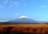 富士山が見たくて山麓に行って来ました、一般道で往復5時間半かかり帰ってソファーでうとうと、目が覚めたら朝の4時半でした。 - 鳥撮り日誌