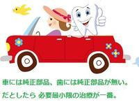 車は純正部品、歯は自然が一番 - 自然歯科診療所