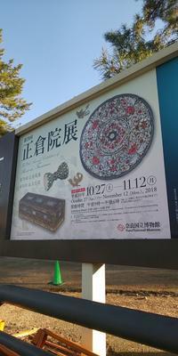 第70回正倉院展→興福寺→猿沢池→中谷堂→鳥貴族 - おでかけごはん