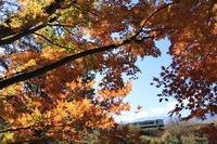 秋の小淵沢周辺撮り鉄散歩 - デジカメ持ってING
