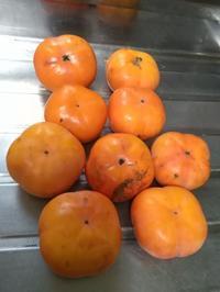 初めての干し柿作り - 一二の日記