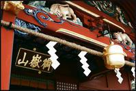 武蔵御嶽-2 - Camellia-shige Gallery 2