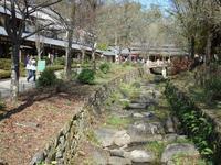 『ぎふ清流里山公園の秋散歩1』 - 自然風の自然風だより