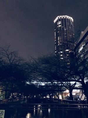 東京も暖冬 - ちりめん戯縫