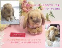 うさぎ 《上半身のみの オーダーメイド》うちの子ぬいぐるみ ブローチ★ - With-Rabbit~♥作品の魅力♥
