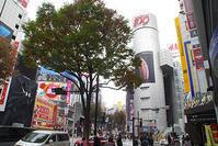 11月12日㈪の109前交差点 - でじたる渋谷NEWS