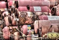 消火器の墓場-3 - Mark.M.Watanabeの熊本撮影紀行