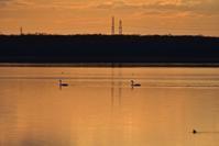 朝焼けの時間~今週のウトナイ湖 - やぁやぁ。