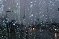 18.11.13本領発揮 - 沖縄本島 島んちゅガイドの『ダイビング日誌』