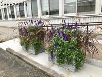 冬の装いにお色直し - さにべるスタッフblog     -Sunny Day's Garden-
