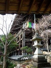 古建築の面白さ - 高知・(有)山陽工務店の仕事
