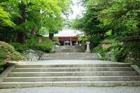檜尾山観心寺(その1) - レトロな建物を訪ねて