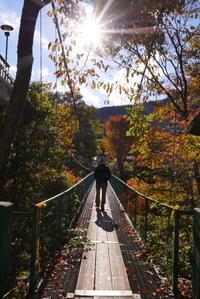 みたらい渓谷紅葉ハイキング-1 - ぶらり休暇